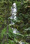 Salahie Falls, Mount Hood, Oregon
