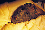 Head of mummy, Tutankhamun and the Golden Age of the Pharaohs, Page 265
