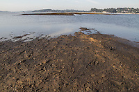 SAO PAULO, SP - 19.11.2014 - QUEDA DE NIVEL NA  GUARAPIRANGA - Represa do Guarapiranga apresenta nova queda em seu volume de armazenamento na manhã desta quarta-feira (19), segundo a SABESP, seu atual nível é de 33,7% ante a 34,4% de sua última medição. A Paisagem da represa se encontra alterada com novos bancos de areia, vegetação cobrindo antiga área coberta pelas águas.<br /> <br /> (Foto: Fabricio Bomjardim / Brazil Photo Press)