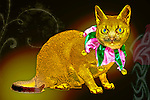 Christmas Cat Singapura pedigreed full-length wearing green and red jester color holiday costume
