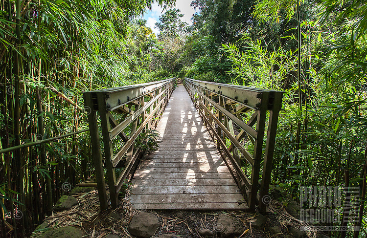Bridge walkway on the Pipiwai hiking trail, Haleakala National Park, Kipahulu, Maui