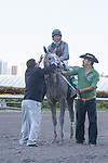 Spot gets a quick rinse after winning the Swale(G2). Gulfstream Park, Hallandale Beach Florida. 02-01-2014