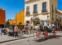 Spanien, Andalusien, Provinz Málaga, Ronda: Pferdekutsche | Spain, Andalusia, Province Málaga, Ronda: horse drawn carriage
