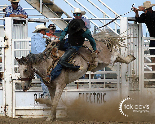 Taylor Cross competes in the saddle bronc riding at the Southeast Weld County CPRA Rodeo on August 12, 2006.