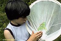 FA27-090z  Luna Moth - boy collecting luna moth adult - Actias luna