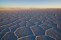 Bolivia, Altiplano, Salar de Uyuni, world's largest salt pan; detail; hexagons evolve a few months after salt pan has dried up; sunrise