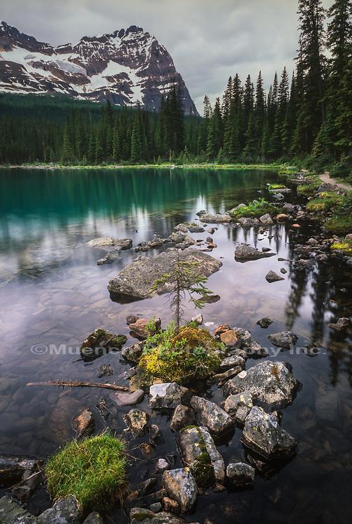 Lake O'Hara,Yoho National Park,Canada,BC