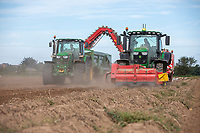 Harvesting potatoes - Lincolnshire, September