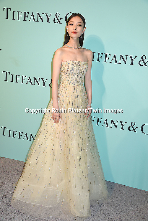Ni Ni attends the Tiffany &amp; Co 2017 Blue Book Collection on April 21, 2017 at St Ann's Warehouse in Brooklyn, New York, USA.<br /> <br /> photo by Robin Platzer/Twin Images<br />  <br /> phone number 212-935-0770