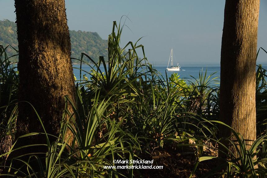 A cruising sailboat rests at anchor, as seen from the virgin rainforest that still borders Radhanagar Beach, a.k.a. Beach Number 7, at Havelock Island, Andaman Islands, Andaman Sea, India