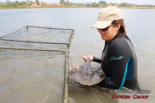 Jessica Varko With Thornback Ray