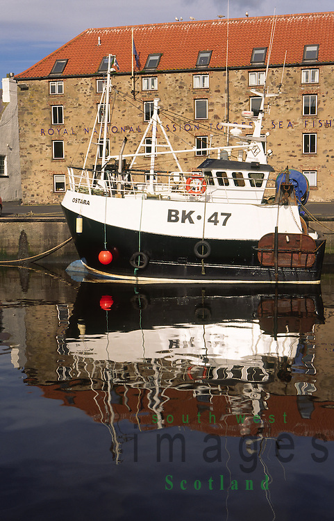 Fishing boats on a quiet still morning in Eyemouth Harbour Berwickshire Scottish Borders Scotland UK