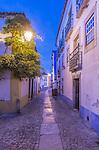 Portugal, Obidos, Cobblestone Street in the Historic Cente at Dawn