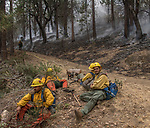 Fire fighters break along fire line. After hearing the news that the South Fork Fire was 1/4 mile from Wawona, I went back to the fire to see what was happening.  Most of the fire activity last night and this morning early were near Chilnualna Falls Road.  It looked to me that the firefighters had done their jobs.   Structure protection was in place with lots of engine and hose lays all over the place.  I decided to photograph Firefighters today Monday, August 21, 2017.  Photo by Al Golub/Golub Photography.