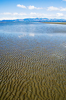Reflections at low tide, Collingwood, Golden Bay, New Zealand