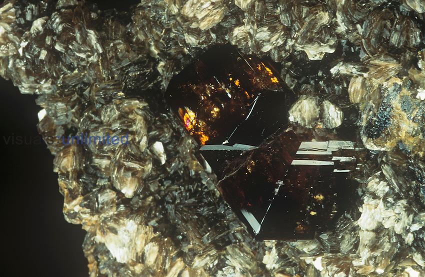 Cassiterite crystals on Muscovite on Granite, Siberia, Rissia.