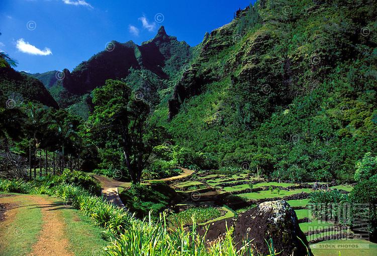 Limahuli gardens at the National Tropical Botanical Gardens, Kauai