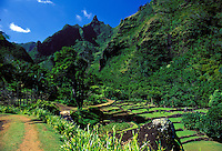 Limahuli gardens at the National Tropical Botanical Gardens, Kauai