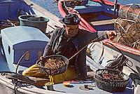 Europe/France/Languedoc-Roussillon/34/Hérault/Béze: Préparation des lignes de fond [Non destiné à un usage publicitaire - Not intended for an advertising use]<br /> PHOTO D'ARCHIVES // ARCHIVAL IMAGES<br /> FRANCE 1980
