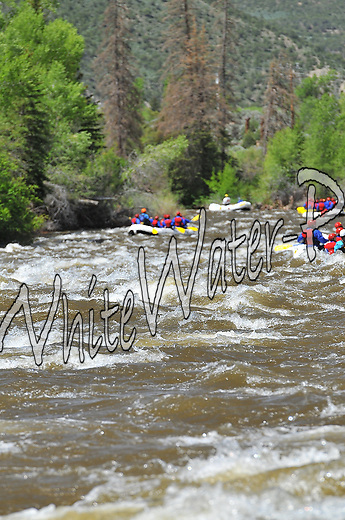 Timberline Tours crashing Interstate, Dead Cow and Rodeo Rapids while running the Lower Eagle River, June 7, 2013, AM, Eagle, Colorado - WhiteWater-Pix | River Adventure Photography - by MADOGRAPHER Doug Mayhew