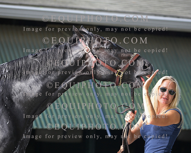 Haskell Contender Nonios gets a morning bath from groom Ceasar Manuel as  Assistant Trainer Christina Jelm (R) holds him outside the barn at Monmouth Park in Oceanport, New Jersey on Friday July 27, 2012.  Nonios will take on 5 others, including morning line favorite Paynter in Sunday's $1 Million Haskell Invitational at Monmouth Park in Oceanport, New Jersey.  Photo By Bill Denver/EQUI-PHOTO.