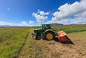 Préparation du sol, broyage de l'herbe servant d'engrais naturel avant plantation de maïs (exploitation de Christophe Courtot), Pouembout