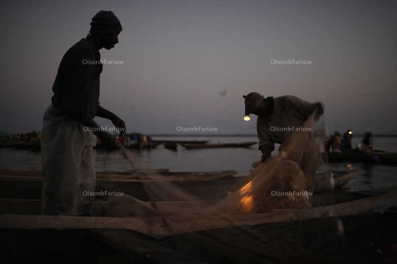 Shrimp fishermen lay their nets overnight and bring them in very early in the morning... pre dawn.....Contact for area is Lamine Mane +221 527 0217..There are many photographs of a shrimp fisherman pulling in his nets while his flashlight is still lit (shot pre-dawn) his name is Souleymane Bayo +221 936 6120.Contacts at Senevisa plant in Ziguinchor are:.Claude Prosper Dieme, head of production prosper@vierasa.sn.and Laurent Sina, Quality Control, lsina@vieirasa.sn..Eduardo Viera SA:  I met Eduardo in Vigo Spain at his headquarters.  He has many fishing and factory operations all over the world including 9 factory ships and two processing plants in Senegal...Anibal Serafin Fernandez Souto is the guy in charge for Eduardo in Senegal.  His mobile is +221 638 5152.Nouveau Quai de Peche.B.P. 1557 Dakar Senegal.+221 889 6868 office.823 6861 fax.senevisa@vieirasa.sn.www.vierasa.sn.home address:.Avda Orillamar.B.P. 1075  36202 Vigo Spain.986 21 32 00 home..Industrialized fishermen pay a license to fish, but then there is no limit for how much they can catch.  The artesenal fishermen are not regulated in any way.  The govt is realizing they have to have some control and banned fishing in November and are opening 5 MPA's...600,000 Senegalese participate in the fishing industry.  When you multiply that number times the 6 or 7 kids they each have and other dependents, you can see that this is a significant percentage of the 12 million Senegalese.  Eighty percent of the fish caught are caught by artesinal fishermen.