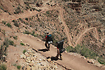 Male and female backpackers hiking down the South Kaibab Trail at Cedar Ridge to Phantom Ranch Campground, Grand Canyon, northern Arizona, USA .  John leads hiking and photo tours throughout Colorado. . John offers private photo tours in Grand Canyon National Park and throughout Arizona, Utah and Colorado. Year-round.