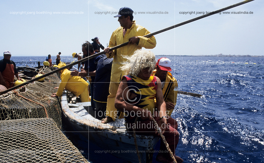 ITALY, Sicily, Egedian island Favignana, La Mattanza, traditional fishing of bluefin Tuna fish, vice rais Clemente Ventrone