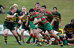Counties Power Cup final between Waiuku and Pukekohe played at Growers Stadium on the 30th of July 2006. Waiuku won 33 - 7.