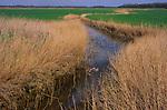 ADD2Y8 Marshland scenery  and drainage ditch reclaimed land Suffolk Sandlings near Boyton England
