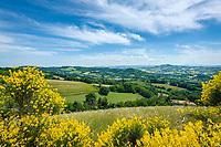 Italien, Marken, bei Fiorenzuola di Focara: Landschaft im Parco Naturale Monte San Bartolo, wenige Kilometer suedlich von Cattolica (Emilia-Romagna) | Italy, Marche, near Fiorenzuola di Focara: landscape at Parco Naturale Monte San Bartolo, a few kilometers south of Cattolica (Emilia-Romagna)