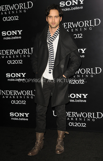 WWW.ACEPIXS.COM . . . . .  ....January 19 2012, LA....Actor Michael Steger arriving at the Los Angeles premiere of 'Underworld Awakening' at Grauman's Chinese Theatre on January 19, 2012 in Hollywood, California. ....Please byline: PETER WEST - ACE PICTURES.... *** ***..Ace Pictures, Inc:  ..Philip Vaughan (212) 243-8787 or (646) 679 0430..e-mail: info@acepixs.com..web: http://www.acepixs.com