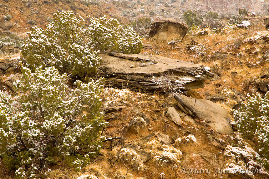 A winter landscape in Palo Duro Canyon with light snow highlighing the canyon features