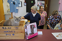 Linda Doak, 57, of Lockport, Illinois at work behind the reception with co-workers at the All Pets Hospital in Lockport, Illinois on October 17, 2008.
