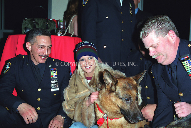 Actress TARA REID having fun with the search and rescue dogs at the Westminster Kennel Club's Tea and Biscuits Benefit to honor the search and rescue dogs and their handlers who risked their lives at Ground Zero in the heroic efforts that took place following the World Trade Center tragedy. The American Park Restaurant in New York. February 6, 2002.  © 2002 by Alecsey Boldeskul/NY Photo Press.     ....*ONE-TIME REPRODUCTION RIGHTS*      ....NY Photo Press:  ..phone (646) 267-6913;   ..e-mail: info@nyphotopress.com