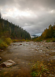 Idaho, North, Coeur d'Alene, Idaho Panhandle National Forest. Autumn color along the Little North Fork of the Coeur d'Alene River with morning mist.