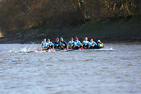 Crew: 53   Cambridge 99 (Tarling)   Op Inter<br /> <br /> Quintin Head 2019<br /> <br /> To purchase this photo, or to see pricing information for Prints and Downloads, click the blue 'Add to Cart' button at the top-right of the page.