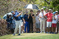 Ernie Els (RSA) during the 1st round of the AfrAsia Bank Mauritius Open, Four Seasons Golf Club Mauritius at Anahita, Beau Champ, Mauritius. 29/11/2018<br /> Picture: Golffile | Mark Sampson<br /> <br /> <br /> All photo usage must carry mandatory copyright credit (&copy; Golffile | Mark Sampson)