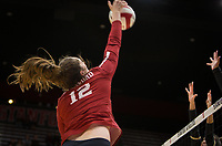 Stanford, CA - October 18, 2019: Audriana Fitzmorris at Maples Pavilion. The No. 2 Stanford Cardinal swept the Colorado Buffaloes 3-0.