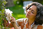 Mature woman cutting flowers in garden
