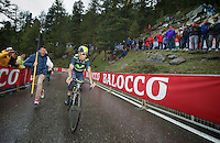 Nairo Quintana (COL/Movistar) on his way to victory (and pink) in the final kilometer up the Val Martello climb/finish (2059m)<br /> <br /> 2014 Giro d'Italia <br /> stage 16: Ponte di Legno - Val Martello (139km)