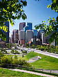 Artistic summertime scenery of Calgary city downtown skyline view and Centre Street Bridge over Bow river framed by green tree leaves. Calgary, Alberta, Canada 2017.