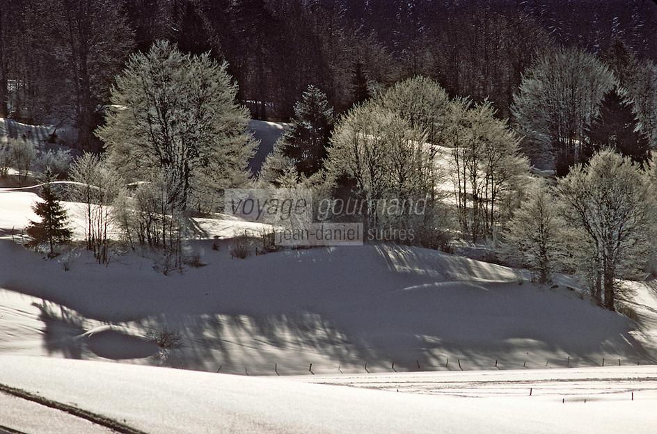Europe/France/Franche Comté/39 /Jura/Env de Morbier: Paysage de Neige et arbres givrés // France, Jura, arround Morbier, Landscape of Snow and covered  frost  trees