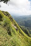 Steep mountain side landscape Ella, Badulla District, Uva Province, Sri Lanka, Asia