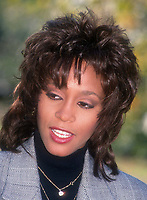 Whitney Houston 1995<br /> Photo By John Barrett/PHOTOlink.net /MediaPunch