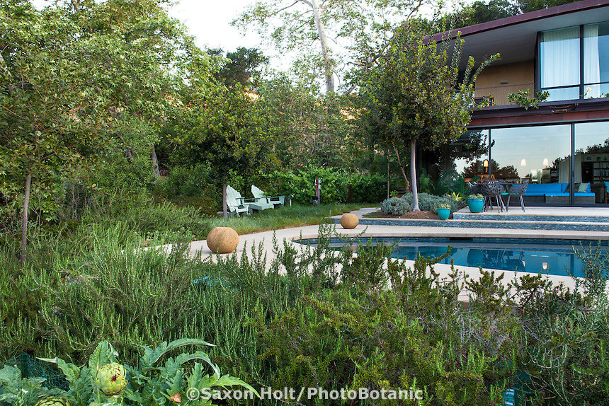 Herb garden with Rosemary, Coyote House, SITES® residential home with sustainable garden Santa Barbara California, Susan Van Atta landscape architect, Ken Radtkey architect,