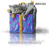 Marcello, REALISTIC ANIMALS, REALISTISCHE TIERE, ANIMALES REALISTICOS, paintings+++++,ITMCEDC1121,#A# ,cats ,kittens