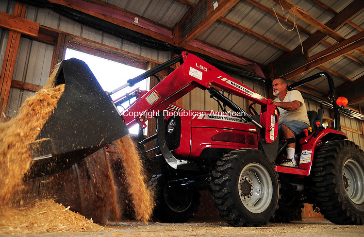 PLYMOUTH, CT 21 AUG 12 - 22_NEW082112AJ02 - Bill Hubbard, of Terryville, the organizer of the agricultural side of the Terryville Lions Country Fair, which begins Friday, spreads sawdust in the cattle barn at the fairgrounds on Tuesday.  Alec Johnson/ Republican-American.