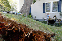 Sue Copeland surveys the damage from a large tree that fell onto her home after last Friday's storm on St. George Avenue in Crozet, VA. Strong winds from the storm downed numerous trees and caused massive power outages across the area.